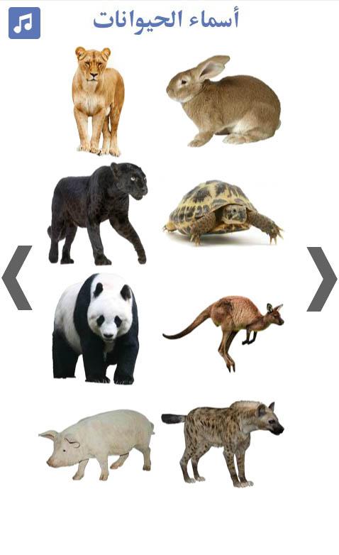 تعليم-أسماء-الحيوانات