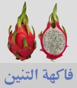 فاكهة التنين أنواع الفواكه واسمائها - أسماء فواكه غريبة