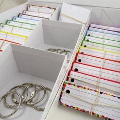 Examenbundle 1000 flashcards + The Box