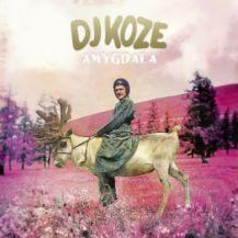 13. DJ Koze – Amygdala [Pampa]