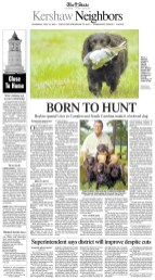 Article about the history and training of Boykin Spaniels in South Carolina.