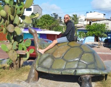 I knew I would ride a tortoise