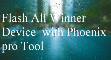 Flash All Winner Device with Phoenix pro Tool
