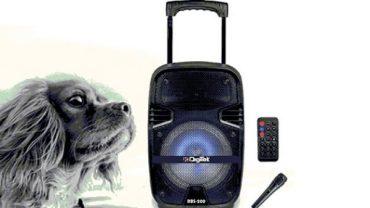 Digitek Bluetooth speaker DBS-200