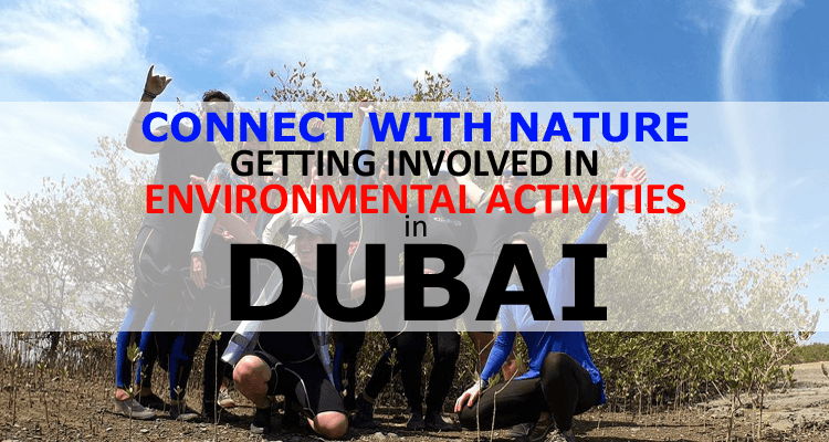 Environmental Activities in Dubai