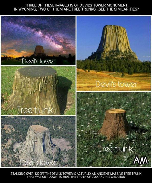 Devil's Tower Flat Earth Giant Trees