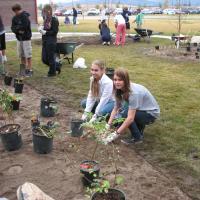 Glacier High School Native Plant Garden