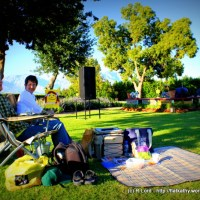 A magical picnic concert in the vineyards with Sonja Herholdt