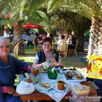 We enjoy breakfast at the Shalom Farmers' Market in the Swakop Valley