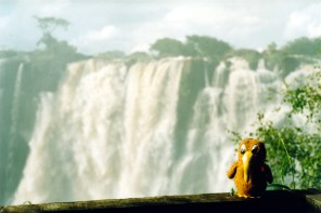 Traveling Kiwi at Vic Falls
