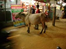 Palolem Shopping