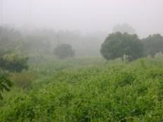 North Thailand Hills