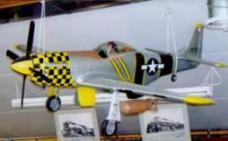 P-51MustangQuarterScaleweb_000