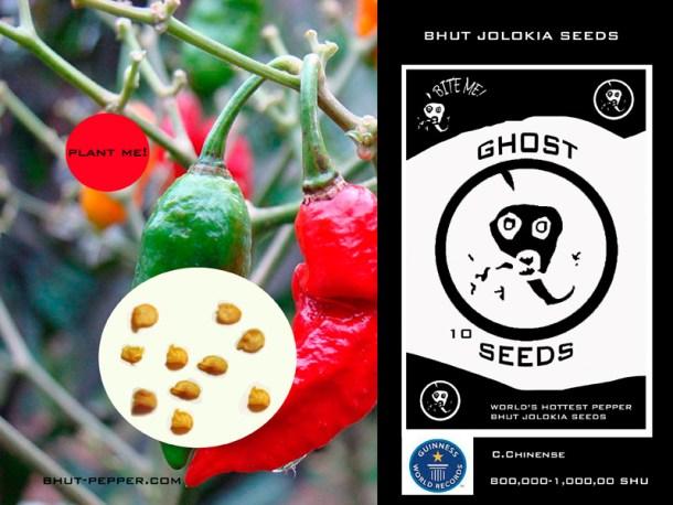 Image credit: Bhut-Pepper.com