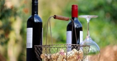 Old vs New World Wine Holiday Dilemmas