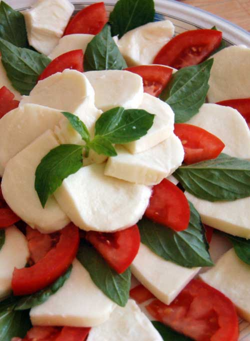 I love the classic combination of tomatoes, mozzarella, and basil in this appetizer. The flavors are as bright as a summer day.