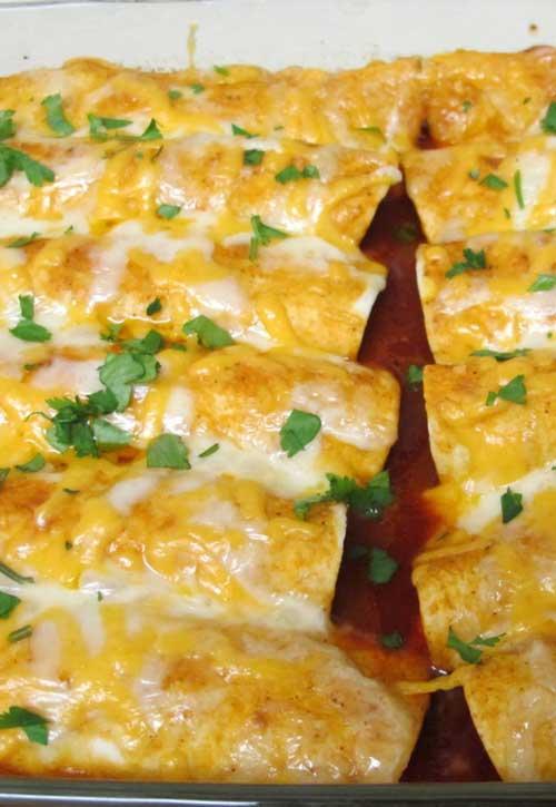 Cheesey Chicken Enchiladas