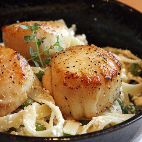 Recipe for Lemon-Ricotta Pasta with Seared Scallops - A ridiculously effortless pasta dish that comes together so quickly you'll have tons of time left over to enjoy the last days of summer.