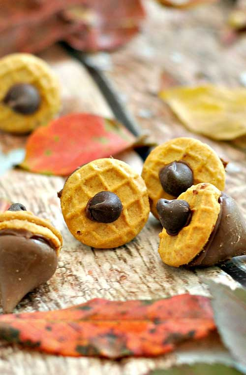 Here is a quick treat that you can make to celebrate the arrival of fall.