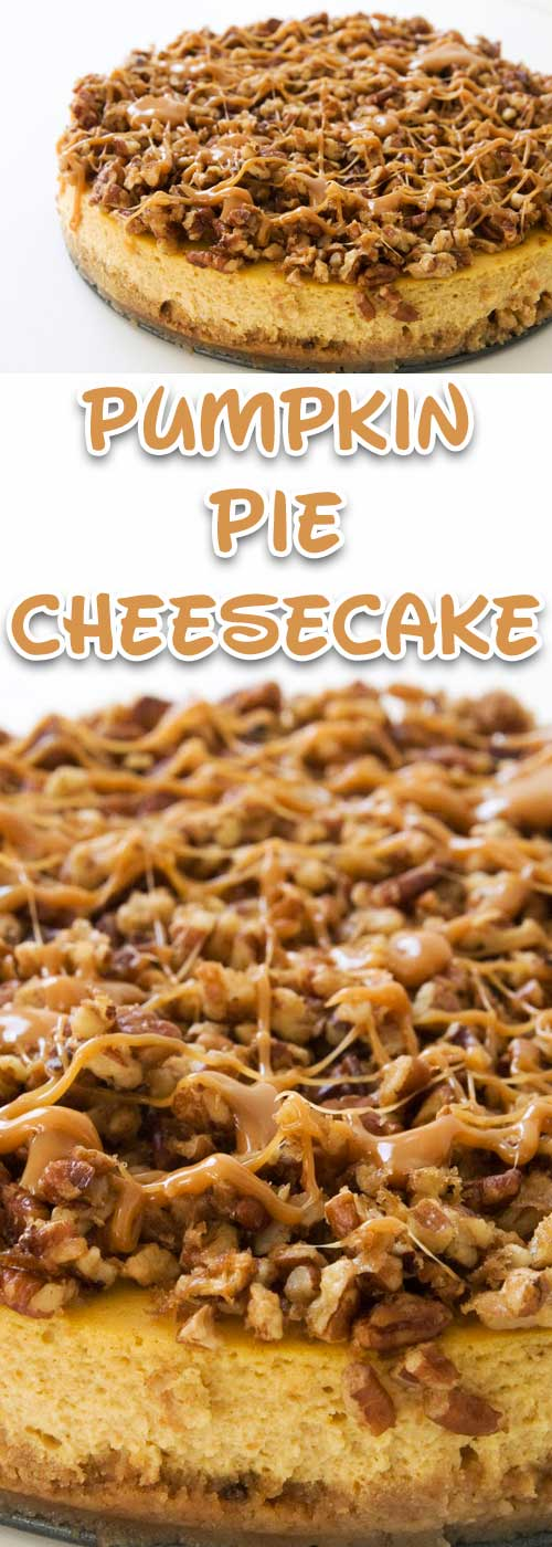 I guarantee this pumpkin cheesecake will be the creamiest cheesecake you'd ever had. And the turtle topping? Gives a nutty explosion of flavor that contrasts with that smoothness. Don't expect any leftovers.