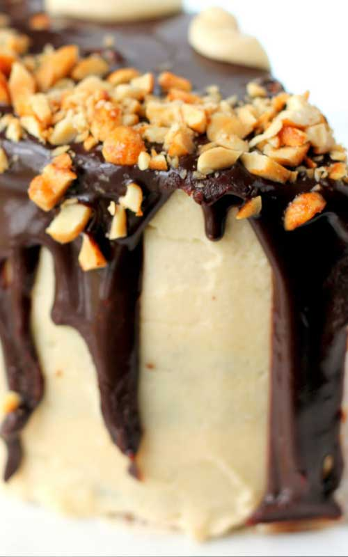 Chocolate Peanut Butter Cake