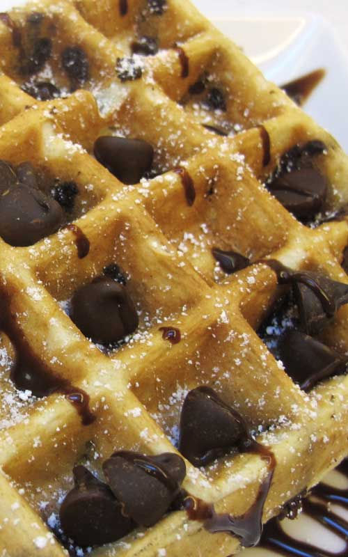 These amazing Chocolate Chip Belgian Waffles are more like a decadent dessert than anything else. Incredibly quick and simple to make, a perfect start to any morning!