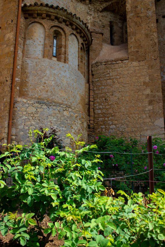 Saint Benedict Monastery Rose Garden Subiaco
