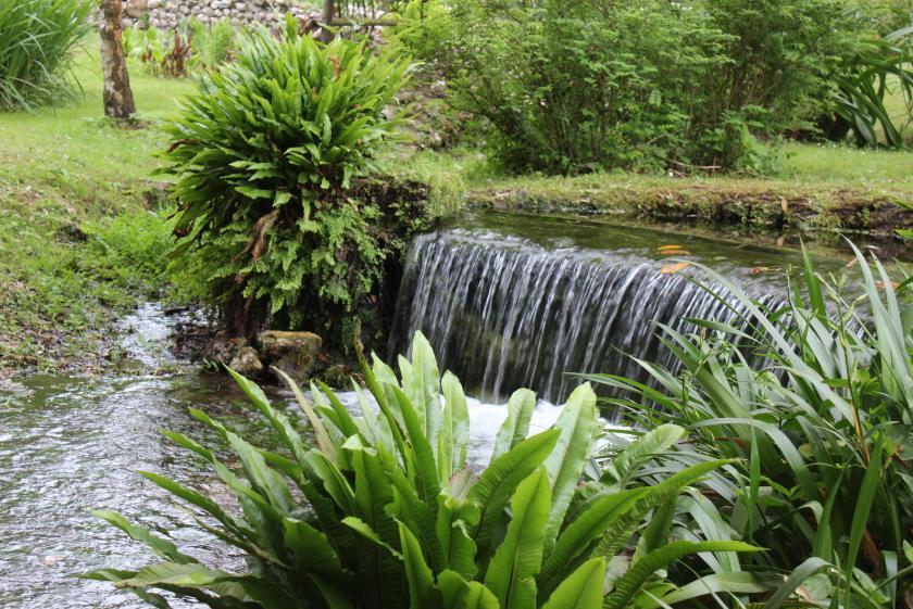 Waterfall in Ninfa Gardens