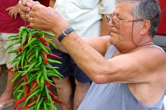 Flavor-of-Italy-Calabria-Food-Tour-Stringing up peperoncini