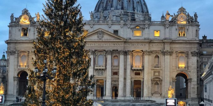 Vatican 2020 Christmas Tree from Slovenia