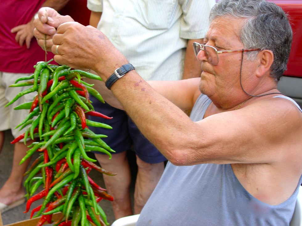 Calabrian man stringing hot peppers in Diamante