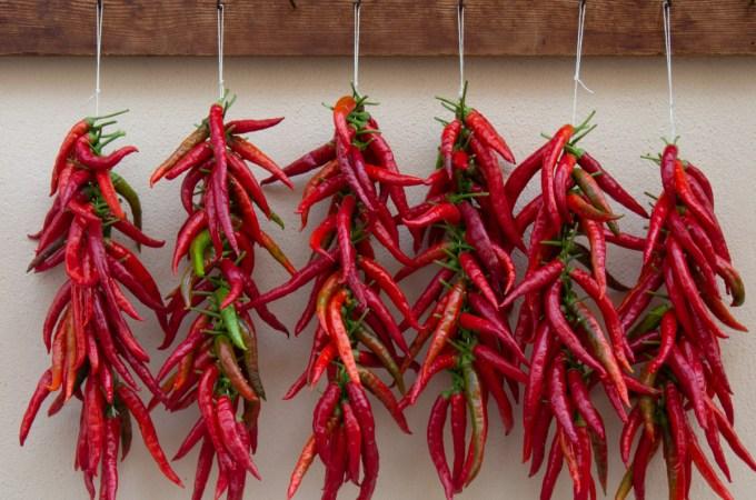 Diavolicchio Diamante hot peppers