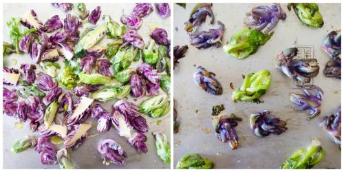 roasted kalettes | flavorthemoments