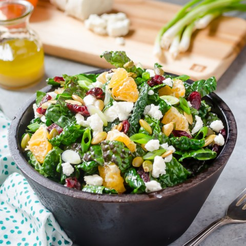 Kale Salad with Goat Cheese, Cranberries and Orange
