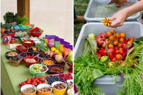earthbound-farm-organic-farm-stand-collage