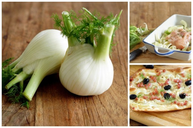 Collage Fennel