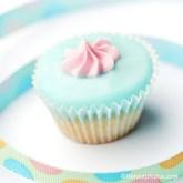 Cupcake 2013