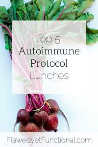 top 5 autoimmune protocol lunches