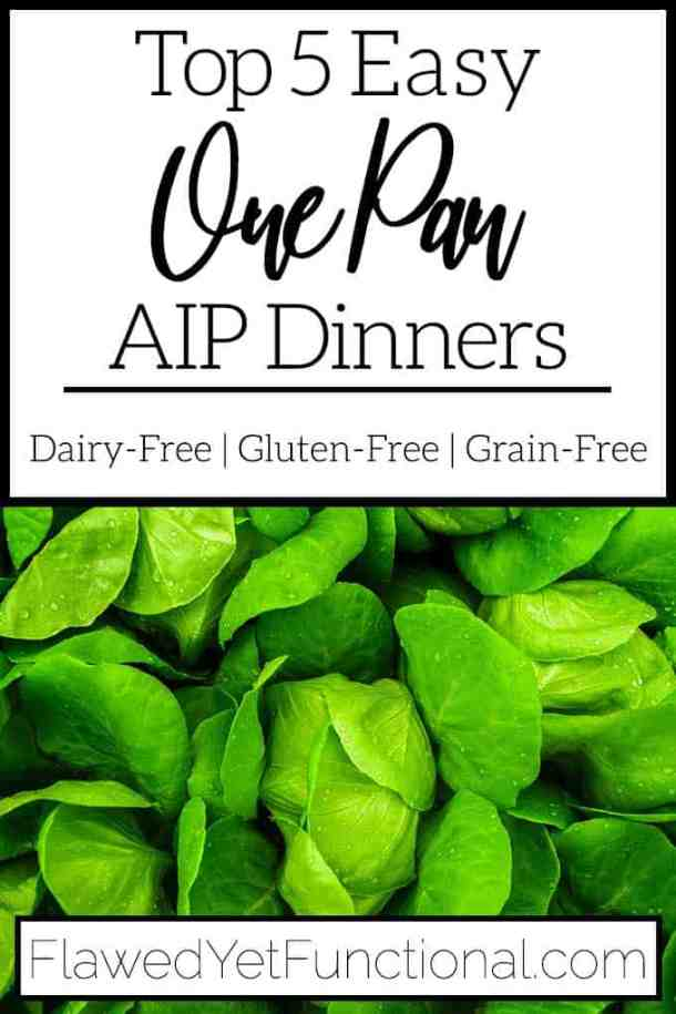 Top 5 One Pan AIP Dinners