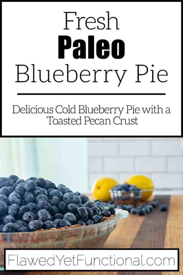 cold fresh paleo blueberry pie