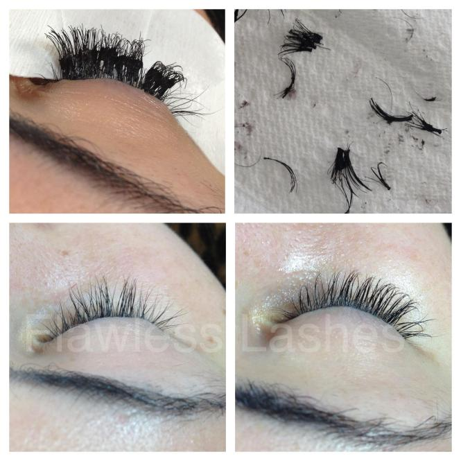 Eyelash How Much Does It Cost