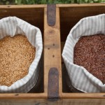 gold and bronze whole linseeds