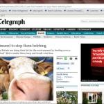 Linseed stops cows belching methane
