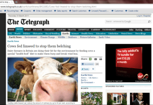 daily-telegraph-crow-belch