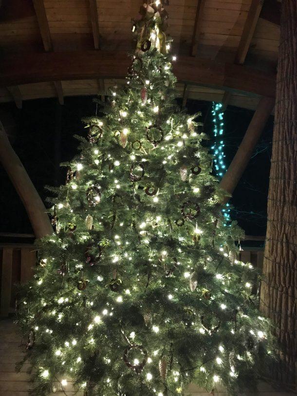 Lit Longwood Christmas tree inside a tree house at Longwood Gardens Holiday Lights