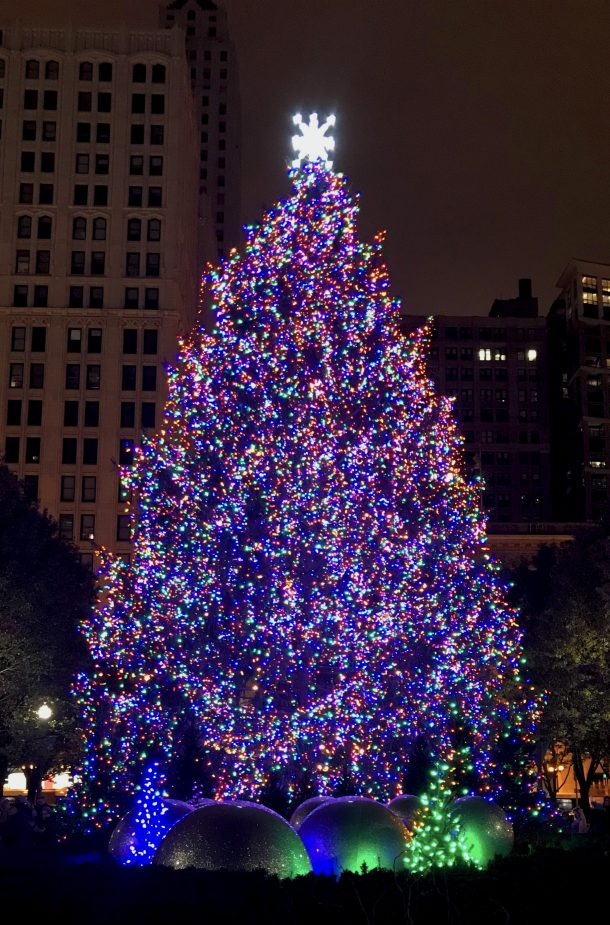 Christmas tree in Millenium Park for holidays in Chicago