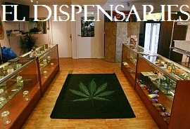 Florida Dispensaries