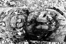 Totem with carvings