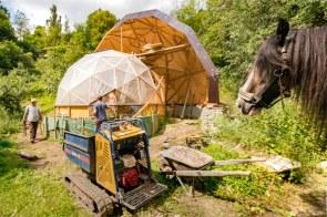 Ganz interessiert schaut das Pferd den fleissigen Handwerkern beim Bau des Geodomes zu.