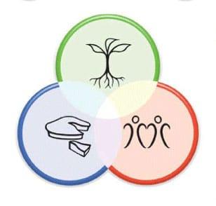 Symbol für die Permakultur Prinzipien nach David Holmgren.